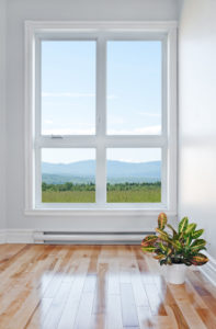 Window Replacement Single